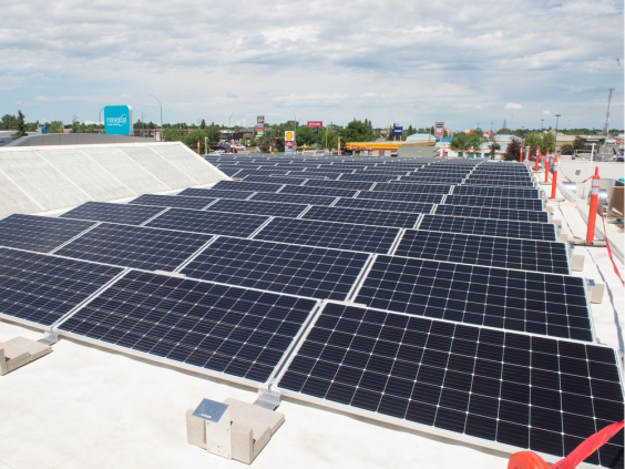 Solar panels on the roof of the Conexus Credit Union North Albert branch. BRANDON HARDER/Regina Leader-Post